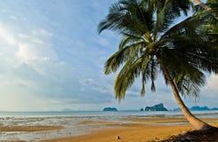 La playa pacífica Fotos de archivo libres de regalías