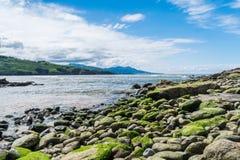 La playa, pureza, se enfría hacia fuera fotografía de archivo libre de regalías