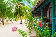 La playa tropical de Filipinas, mar, palmas cultiva un huerto fotos de archivo libres de regalías