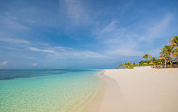 La playa tropical en Maldivas con las palmeras y la turquesa riegan Foto de archivo
