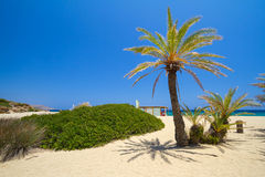 La playa Vai llamó la playa de Bounty en Crete Fotos de archivo