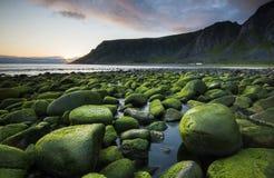 La playa verde Fotografía de archivo libre de regalías