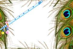 La pluma del pavo real y el fondo blanco del overg de la flauta con el texto copian el espacio Fotografía de archivo libre de regalías