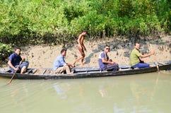 La plus grande forêt de palétuvier du monde au Bangladesh tout près une belle rivière images libres de droits
