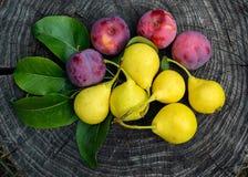 La poire a fraîchement sélectionné la prune jaune et rose sur un tronçon en bois Images stock