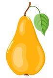 La poire jaune. Image libre de droits