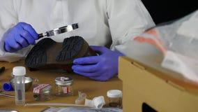 La policía experta recoge muestras en laboratorio científico almacen de metraje de vídeo