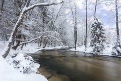 La Pologne - le Roztocze, hiver Photo libre de droits