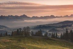 La Polonia, autunno, bello tramonto sopra il Tatras, montagne: Vista fotografia stock libera da diritti