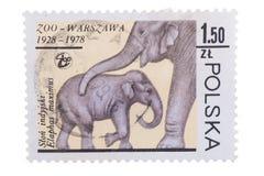 LA POLONIA - CIRCA 1978: Un bollo stampato nell'elefante Mo di manifestazioni Fotografia Stock Libera da Diritti