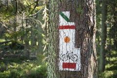 La Polonia, montagne di Gorce, via che traccia i segni Fotografie Stock