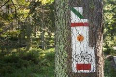 La Polonia, montagne di Gorce, via che traccia i segni Immagini Stock Libere da Diritti