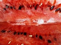 La polpa dell'anguria rossa matura con i semi neri ed il bianco fotografie stock