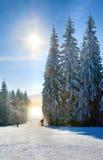 La polvere della neve abbaglia lucidare sul pendio di corsa con gli sci di inverno Immagini Stock