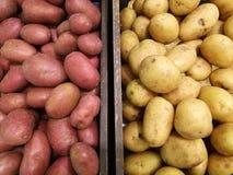 La pomme de terre organique fraîche et la patate douce tiennent parmi des beaucoup le fond de pomme de terre dans le panier dans  Photo stock