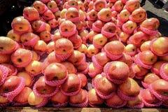 La pomme fraîche porte des fruits en vente au marché en plein air photographie stock