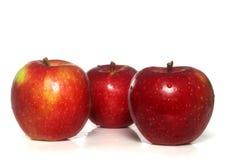 la pomme a isolé Macintosh Photos libres de droits