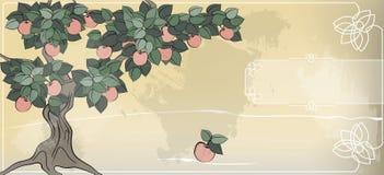 La pomme ne tombe pas loin de l'arbre Image libre de droits