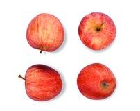 La pomme rouge entière de gala isloated sur le fond blanc, configuration plate Image libre de droits