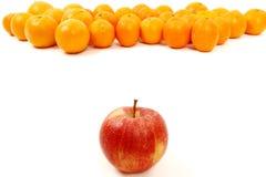 La pomme rouge est le chef Images stock