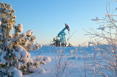 La pompa di olio. Fotografia Stock