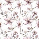 La porpora floreale di rosa del modello dell'acquerello dipinto a mano colora il seamle fotografia stock libera da diritti