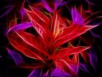 La porpora rossa d'ardore lascia l'estratto Fotografie Stock Libere da Diritti