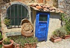 La porta blu Immagini Stock