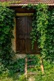 La porta nel giardino Fotografia Stock