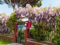 La porte de jardin Photographie stock libre de droits