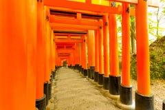 La porte de Torii de tombeau de Fushimi Inari entaille Forest Trees photographie stock libre de droits
