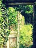 La porte oubliée Photographie stock libre de droits