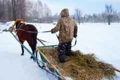 La position d'homme monte dans un traîneau sur un cheval photographie stock libre de droits