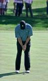 La position de mise de Tiger Woods. Image libre de droits