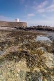 La posizione costiera intorno ai michaels della st monta in Cornovaglia Inghilterra Regno Unito Posta dell'allerta nel porto di M Immagini Stock