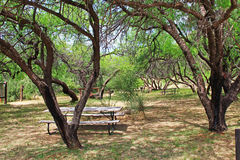 La Posta Quemada Ranch Picnic Area in Colossal Cave Mountain Park Stock Photography