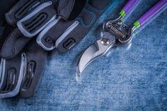 La potatura tagliente tosa i guanti della sicurezza su fondo metallico Fotografia Stock Libera da Diritti