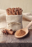 La poudre de cannelle et les bâtons de cannelle dans la toile à sac mettent en sac Photo stock