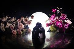 La poupée deux étreignant sur la table avec les fleurs et la décoration de lune a allumé le fond avec de la fumée Concept d'amour Photos stock