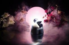 La poupée deux étreignant sur la table avec les fleurs et la décoration de lune a allumé le fond avec de la fumée Concept d'amour Photographie stock