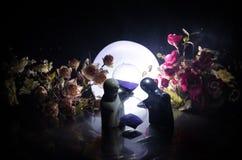 La poupée deux étreignant sur la table avec les fleurs et la décoration de lune a allumé le fond avec de la fumée Concept d'amour Images stock