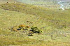 La pradera y el camino unsurfaced Fotos de archivo libres de regalías