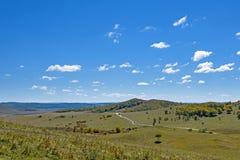 La pradera y el camino unsurfaced Imagenes de archivo