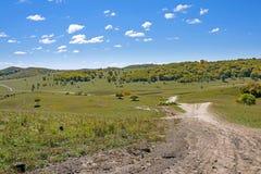 La pradera y el camino unsurfaced Imagen de archivo