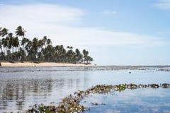 La Praia fa il proprio forte in Bahia, Brasile immagini stock