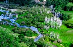 La prairie de BaShang Image libre de droits