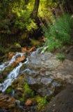 La precipitación de la cascada imagen de archivo