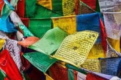 La preghiera di buddismo tibetano inbandiera il lungta Immagine Stock