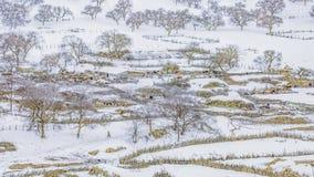 La première ferme de neige photo stock