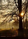 La première lumière de l'aube Photographie stock libre de droits